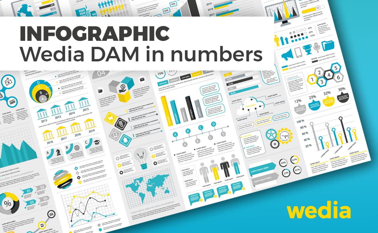 Wedia DAM in numbers: Infographic