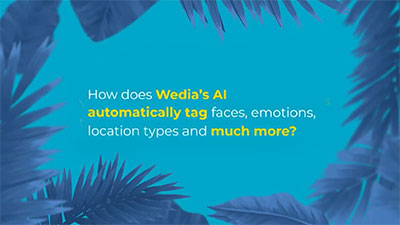 How to easily index your media using Wedia DAM AI indexing Services