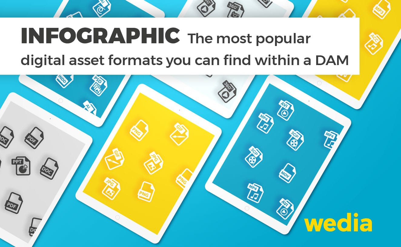 Infographic: The most popular asset formats you can find within a DAM