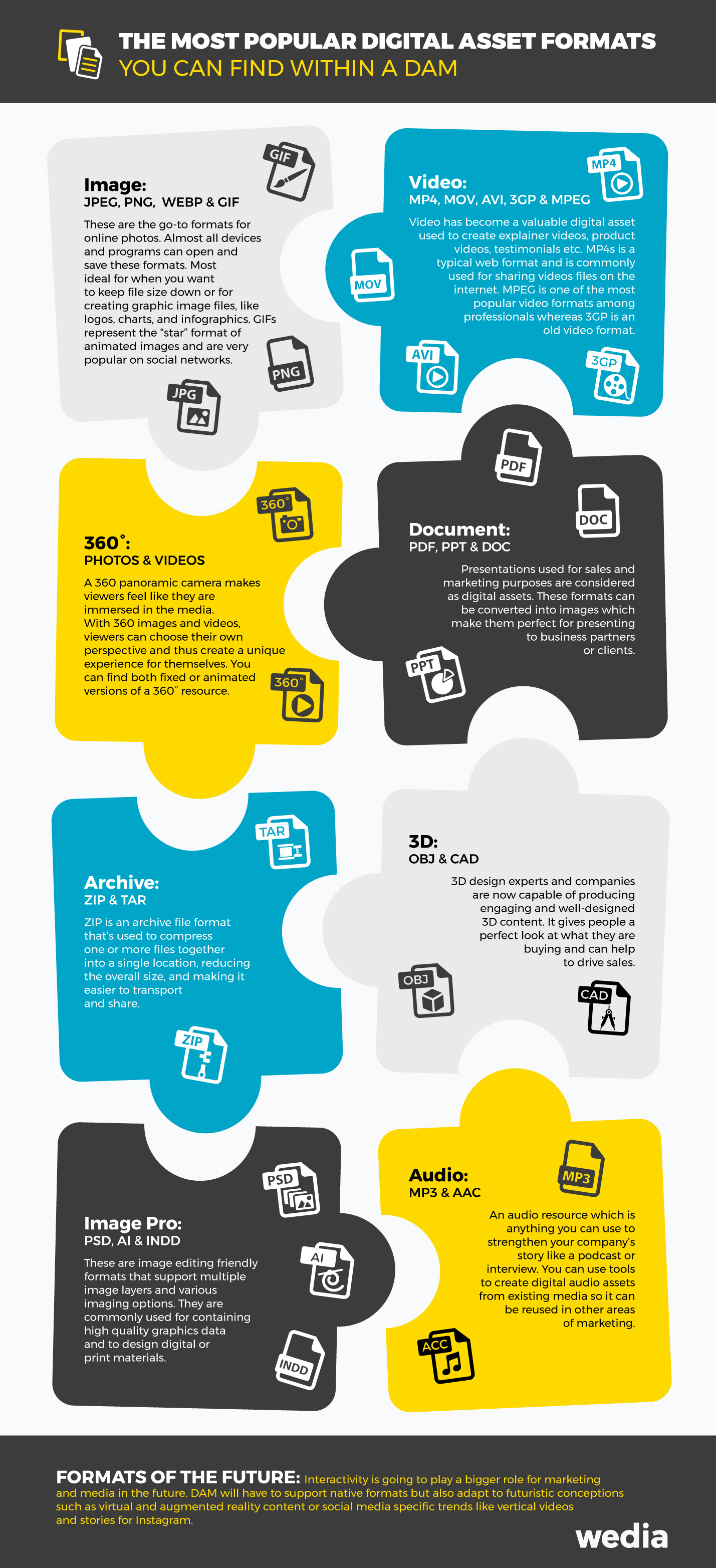 Infographic most common digital asset formats within a DAM